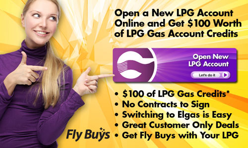New LPG customers get $80 of gas credits